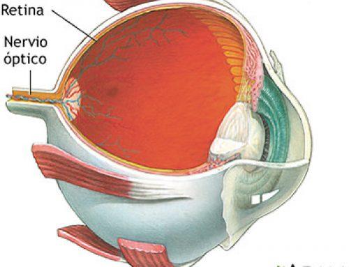 Prueba de dilatación pupilar
