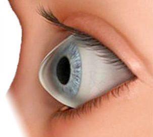 b3a5fc0f527e5 Resultado de imagen para lentes de contacto para queratocono