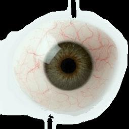 protesis ocular